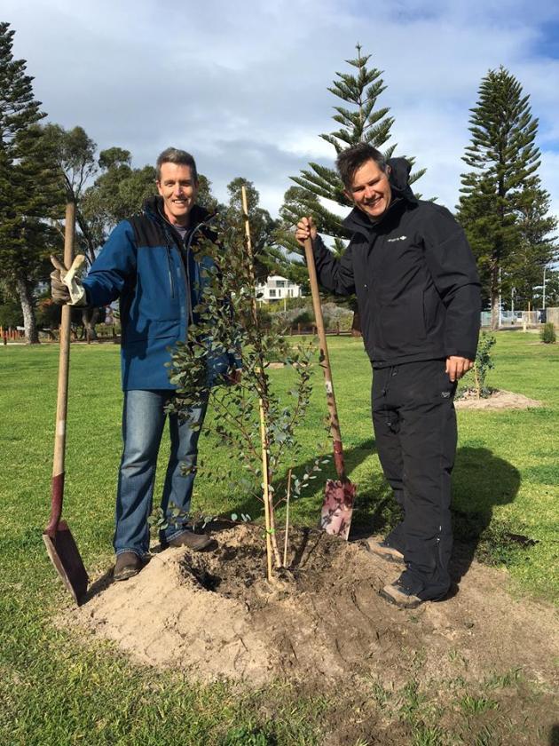 josh brad tree planting